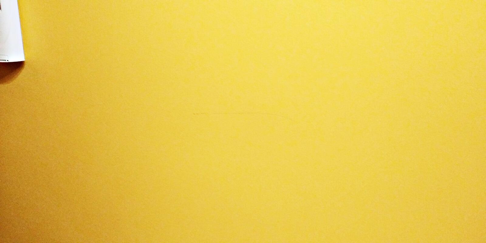 Otarcia od kurtek na kolorze Miodowy Amber