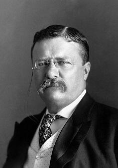 Prezydent USA Theodore Roosevelt