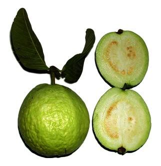 Owoc gujawa