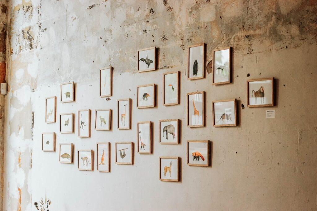 Grzyb i pleśń na ścianach w domu