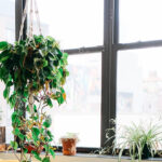 Ranking 2021 elektrycznych myjek do okien